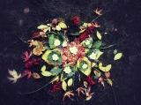 Capturing Falling LeavesForever